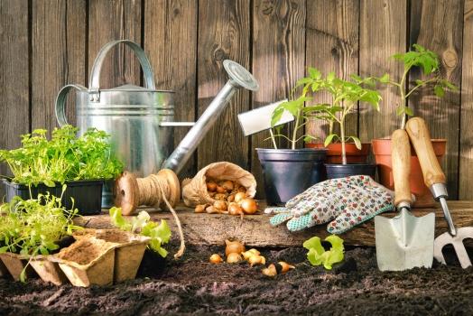 Atelier jardinage avec les Incroyables Comestibles