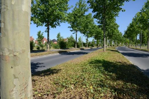 Boulevard des Bois Rochefort