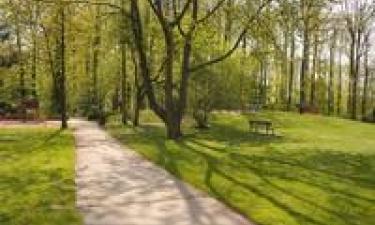Le parc Schlumberger