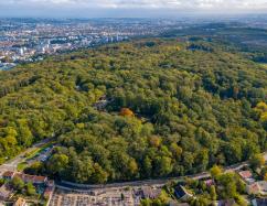 Comité d'usagers de l'Espace naturel régional des Buttes du Parisis