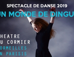 Spectacle de danse 2019 : un monde de dingue