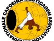 Capoeira Mestiçagem